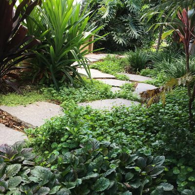Basalt steppers, irrigation, plant selection and garden lighting in Florida Gardens.