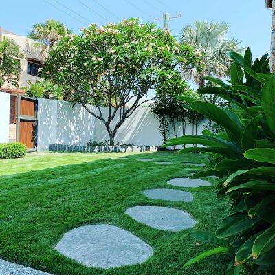 Paving, garden edging, turf, irrigation and garden design in Mermaid Beach.